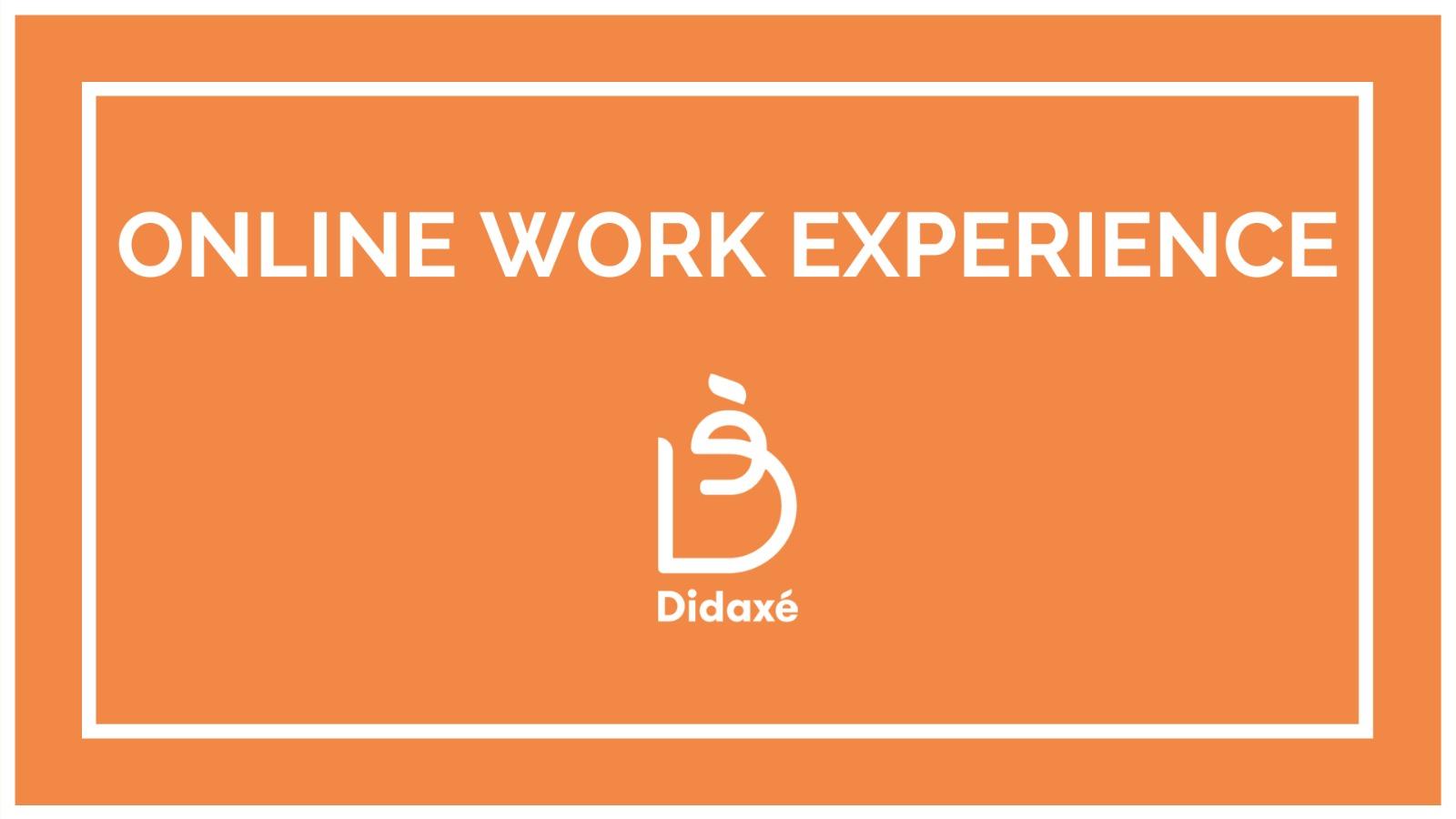 Online Work Experiences